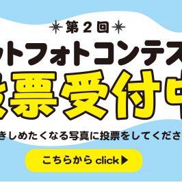 【大好評】第二回ペットフォトコンテストスタート!